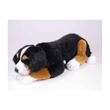 Peluche allongée chien de montagne bernois 50 cm Piutre -1265