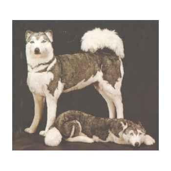 Peluche debout Husky de Sibérie 80 cm Piutre -2211