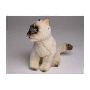 Peluche assise mascotte chat siamois 20 cm Piutre -4295
