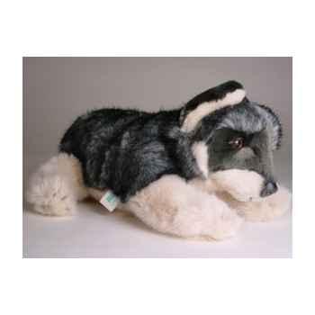 Peluche allongée loup caucasien 35 cm Piutre -1244