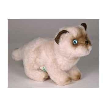 Peluche debout chaton siamois 20 cm Piutre -2446