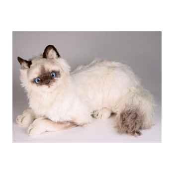 Peluche allongée chat birman 45 cm Piutre -2312