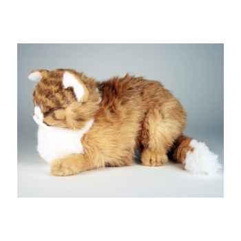 Peluche chat maine coon qui dort 40 cm Piutre -2383