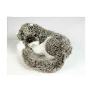 Peluche Miniature qui dort 15 cm Piutre -4266