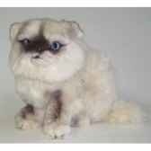 peluche assise chat persan colourpoint ou himalayan 25 cm piutre 2433