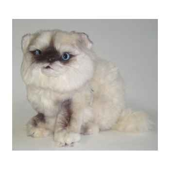 Peluche assise chat persan Colourpoint ou Himalayan 25 cm Piutre -2433