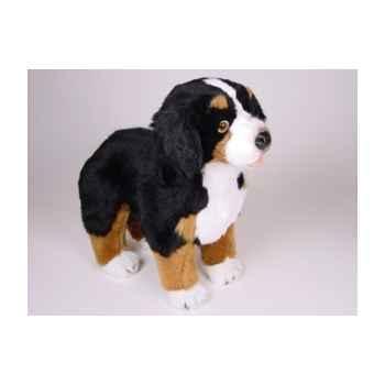 Peluche debout chien berger Bernois 50 cm Piutre -1263