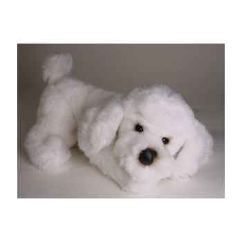 Peluche allongée poodle blanc 35 cm Piutre -282