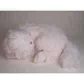 peluche chat persan blanc dormant 50 cm piutre 313