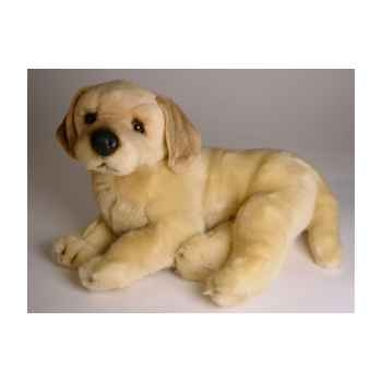 Peluche allongée golden retriever 40 cm Piutre -2206