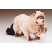 peluche debout chat persan couleurpoint 60 cm avec chaton piutre 2359