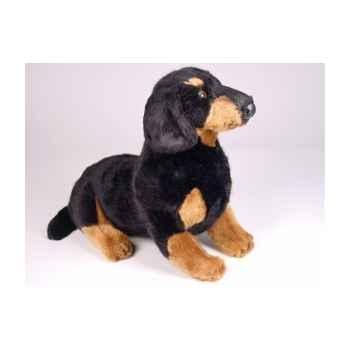 Peluche assise teckel dachshund 35 cm Piutre -1212