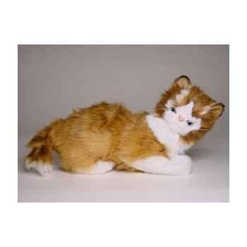 Peluche allongée chat maine coon 30 cm Piutre -2382