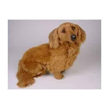 Peluche assise teckel dachshund, poils longs 60 cm Piutre -2252