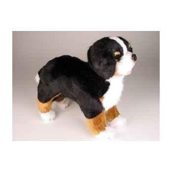 Peluche debout chien berger bernais 35 cm Piutre -3326