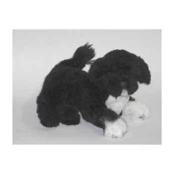 Peluche allongée chien d'eau Portugais 40 cm Piutre -4227
