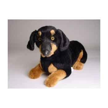 Peluche allongée teckel dachshund 35 cm Piutre -1213