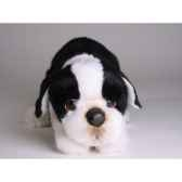 peluche allongee boston terrier 35 cm piutre 4222