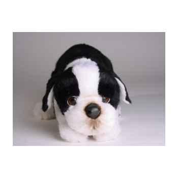 Peluche allongée boston terrier 35 cm Piutre -4222