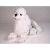 peluche allongee poodle blanc 60 cm piutre 259