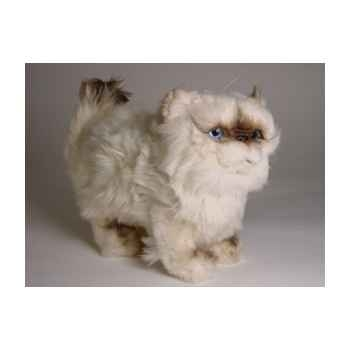 Peluche debout chat colour point ou himalaya 30 cm Piutre -2432