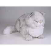 peluche chat persan argente dormant 40 cm piutre 2437