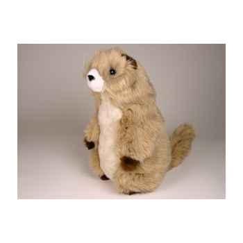 Peluche debout marmotte 38 cm Piutre -2653