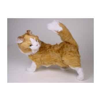 Peluche debout chat maine coon 60 cm Piutre -2380