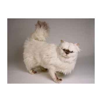 Peluche debout chat Colourpoint ou himalaya 50 cm Piutre -2430