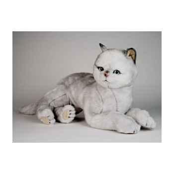 Peluche allongée chat british poils courts 45 cm Piutre -2461