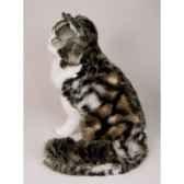 peluche assise chat de norvege 50 cm piutre 2464