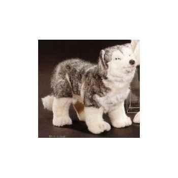 Peluche debout Husky de Sibérie 40 cm Piutre -2214