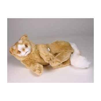 Peluche allongée chat Turc de Van marron 35 cm Piutre -329