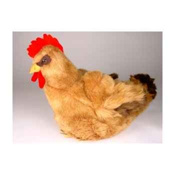 Peluche poule marron 40 cm Piutre -701