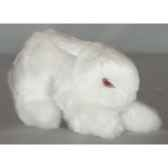 peluche lapin blanc 20 cm piutre 705