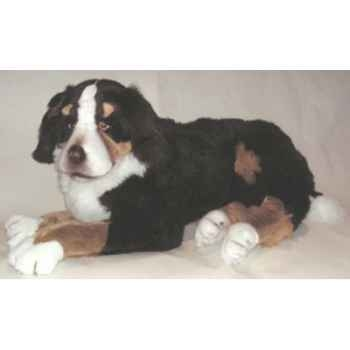 Peluche allongée chien de montagne bernois 100 cm Piutre -1262