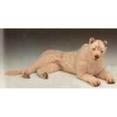 peluche allongee lionne blanche 140 cm piutre 2537