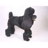 peluche debout poodle noir 80 cm piutre 250