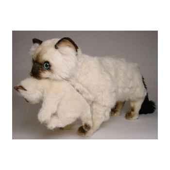 Peluche debout chat siamois 60 cm avec châton Piutre -2394