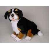 peluche assise chien de montagne bernois 50 cm piutre 1264