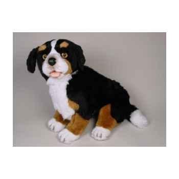 Peluche assise chien de montagne bernois 50 cm Piutre -1264