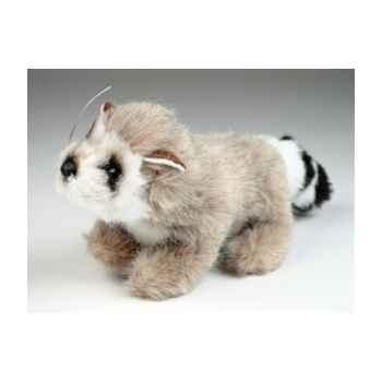 Peluche Miniature râton laveur 15 cm Piutre -4262