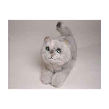Peluche allongée chat british poils courts 28 cm Piutre -2463