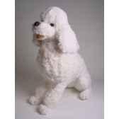 peluche assise poodle blanc 60 cm piutre 258