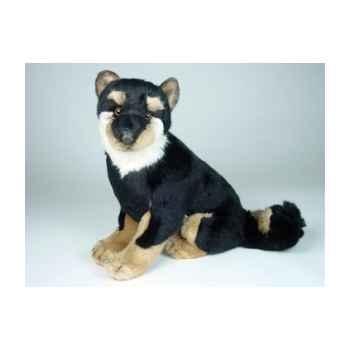 Peluche assise shiba inu noir/marron 40 cm Piutre -3369