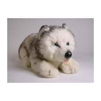 Peluche allongée Husky de Sibérie 40 cm Piutre -2216