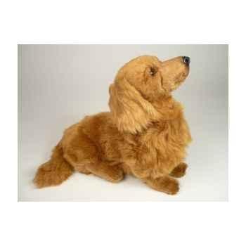 Peluche assise teckel dachshund, poils longs 35 cm Piutre -2254