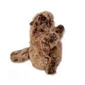 marionnettes peluche a main lpm marmotte