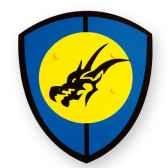 boucliers en bois tete dragon 04690