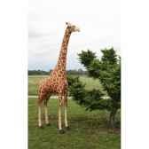 peluche automate girafe 280cmh 160cm5854 anima 0249